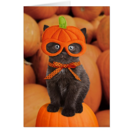 pumpkin_kitten_halloween_card-r051be55fbe9d4e66b652a67bcfa91955_xvuat_8byvr_540